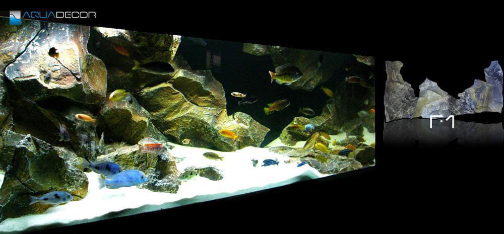 3D aquarium background in large aquarium