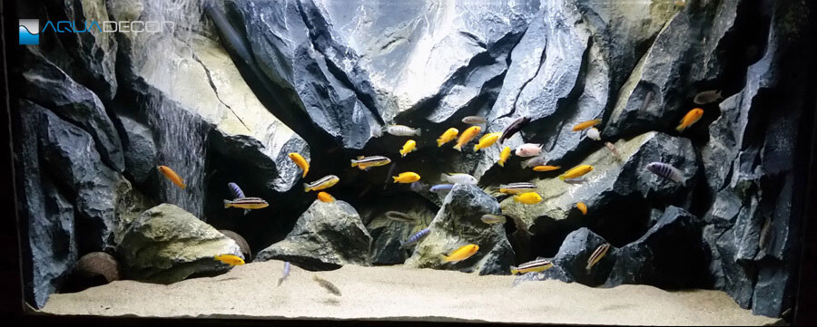 classic rock aquarium background
