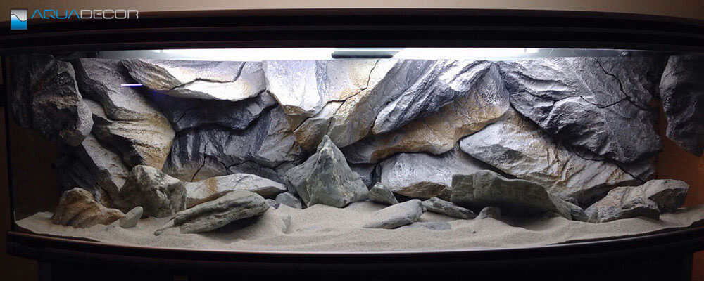 fish tank with aquarium background our model classic rock