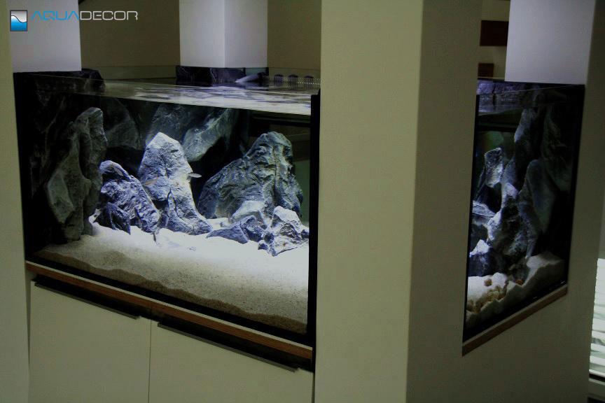 3D aquarium background, model F in a fish tank
