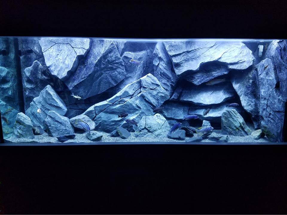 Fish tank backgrounds with rocks decoration, our model C8
