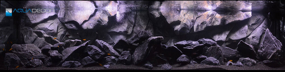 fish tank with our aquarium background model classic rock
