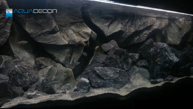 rock aquarium background in classic fish tank on a wall