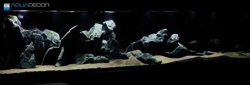 one of model F aquarium backgroud in a fish tank