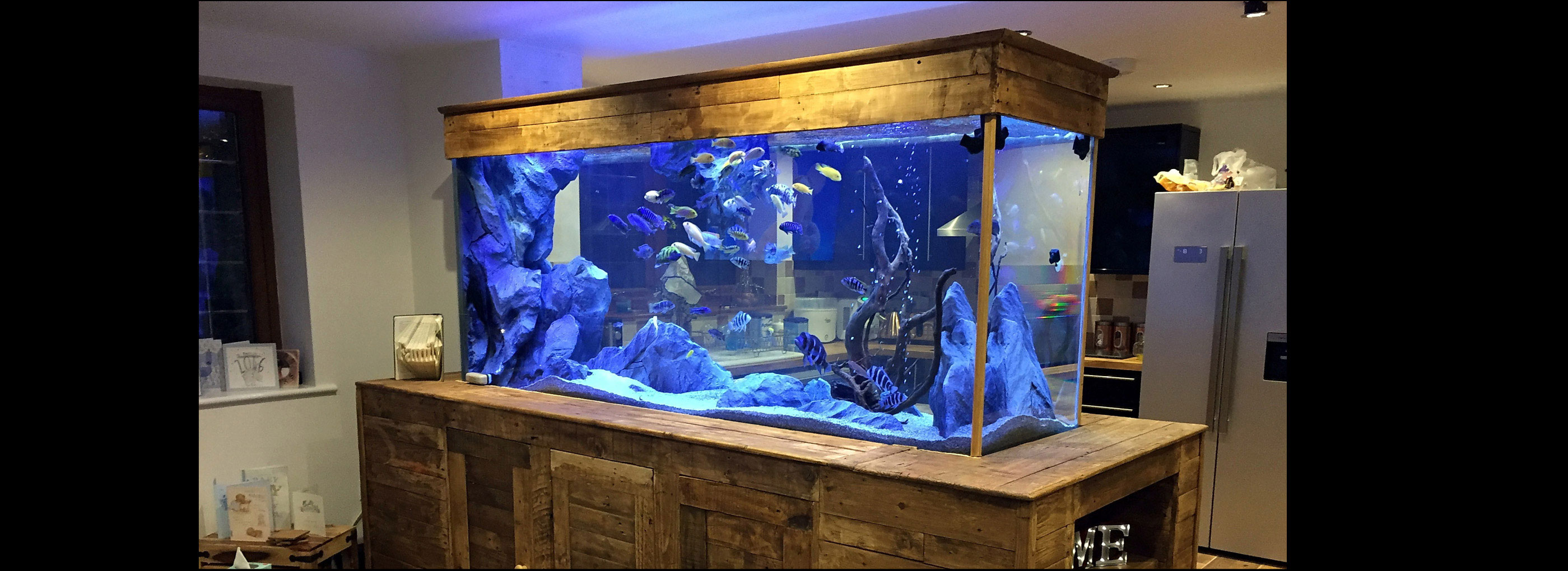 Gallery aquadecor backgrounds - Fish tank partition wall ...