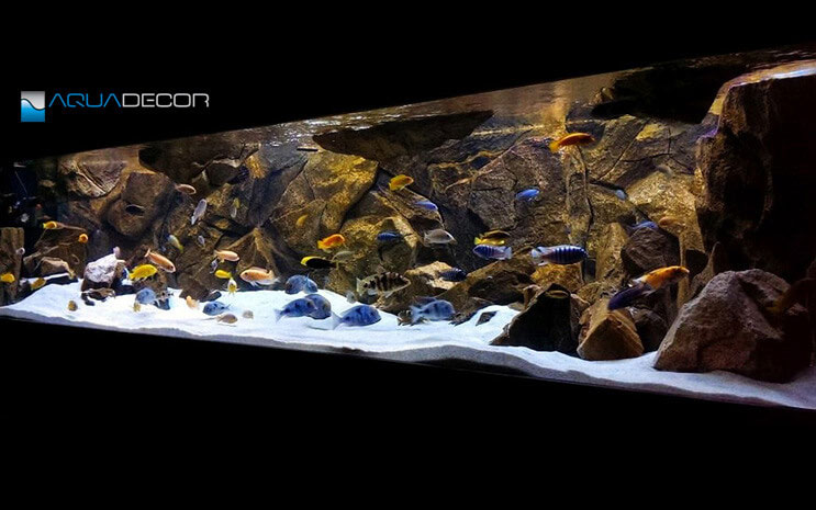 classic-rock-aquarium-background-aquadecor-015