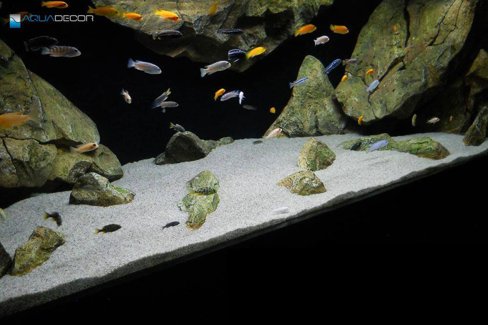 wall mounted room divider aquarium background