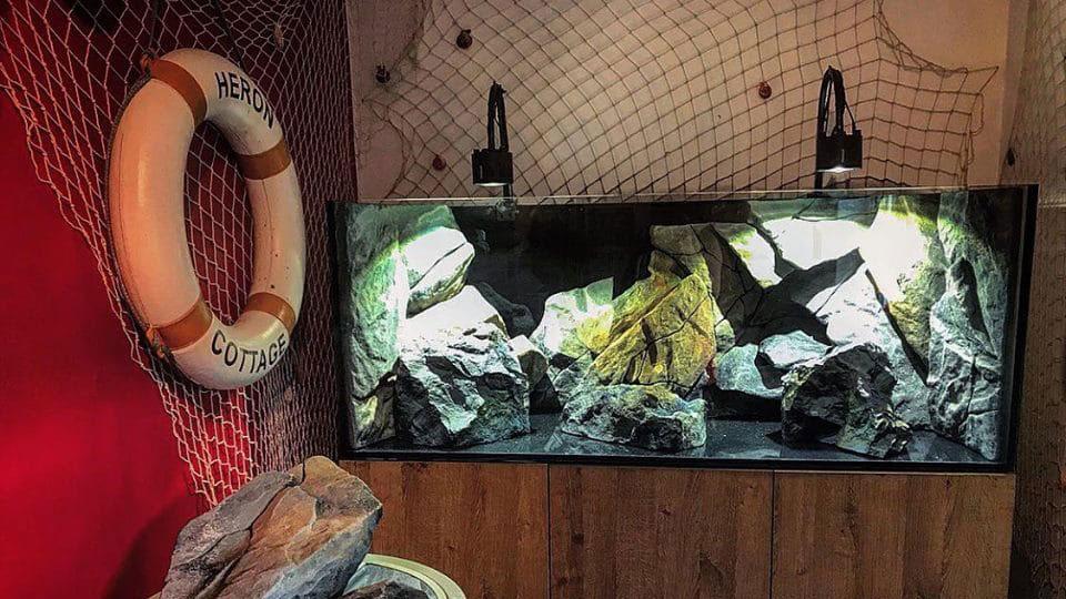 Unique Aquarium Style & Aquarium Decorations - Aquadecor ...