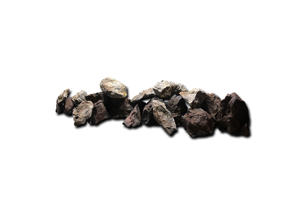 logs-roots-bottom-rocks-05