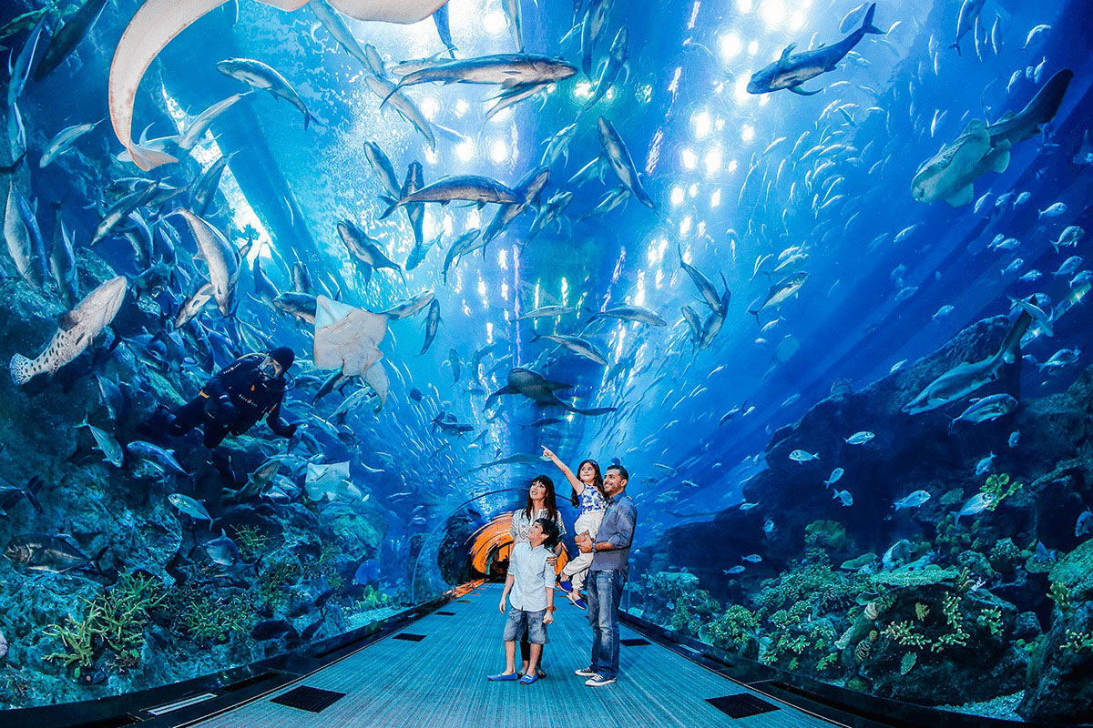 the largest aquarium - dubai mall